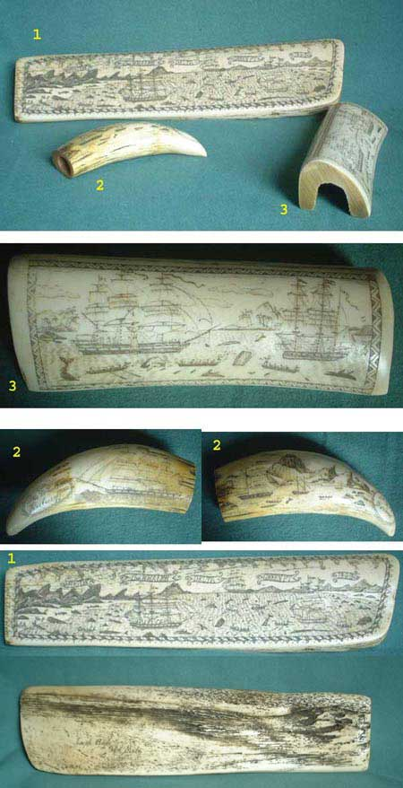 Set of 3 Scrimshaw whale bone and tooth